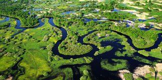 Прыпяць и Припять - беларуская Амазонка
