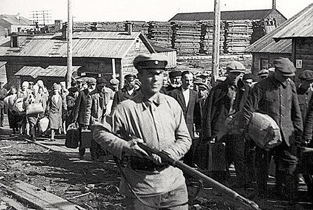 расстрелы 1937