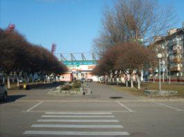 Аллея ведёт на стадион Центральный в Гомеле