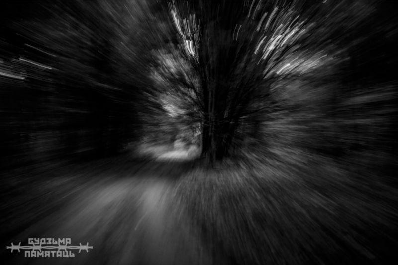 Фото размытого чёрного леса