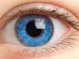 Офтальмопатология и заболевания глаз