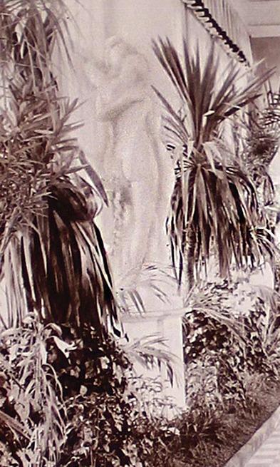 """Фрагмент фотаздымка Паўднёвай галерэі палаца са скульптурай """"Тры грацыі"""" з альбома """"Homel 1911"""""""