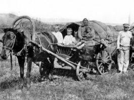 Аграрные переселения крестьян из Беларуси в Сибирь после Столыпинской реформы