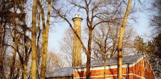 Сахарный завод в Гомеле и зимний сад