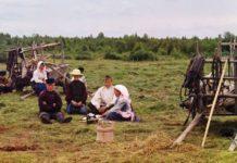 Хозяйство фольварков в Гомеле при Румянцевых