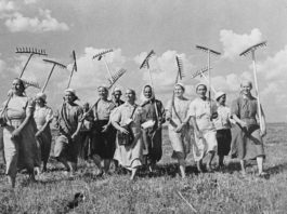 Дняпроўская камуна — камуністычны эксперымент на Лоеўшчыне