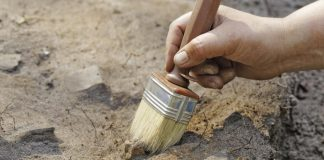 Абследаванне і археалогія