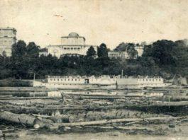 Город Гомель. Географическо-статистический очерк (1911 г.)