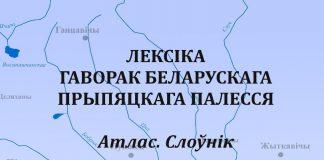 Лексіка гаворак беларускага Прыпяцкага Палессе