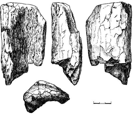 прылада і археалагічная знаходка ў Гомелі