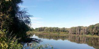 Озеро Дедно в Гомеле