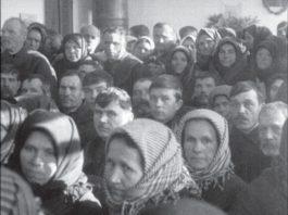 Сельские советы немцев в Беларуси и их история