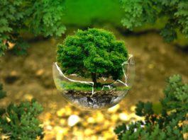Охрана природы Гомельской области