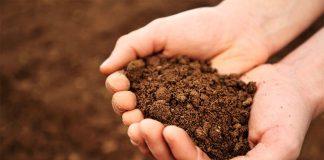 Почва Гомельской области