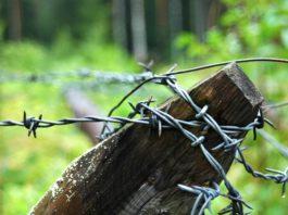 Усталяванне акупацыйнага рэжыму на тэрыторыі Калінкавіцкага раёна ды Акупацыя