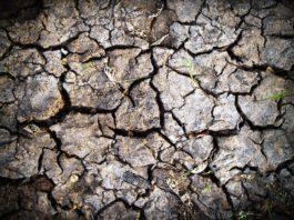 Эрозия почв Полесье