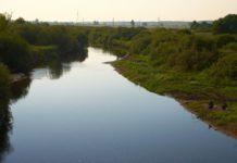 Полесье и экология Беларуси
