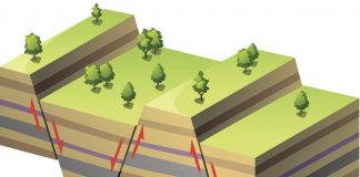 Припятский прогиб и его тектоника