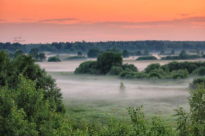 Ландшафтное разнообразие и антропогенная преобразованность ландшафтов Восточно-Белорусской провинции