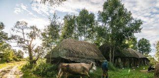 белорусская деревня и советская власть