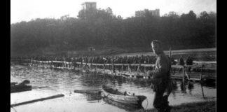 Гомель в Великой Отечественной войне и оккупация Гомеля