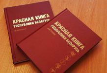 Растения Гомельской области, занесенные в Красную книгу Республики Беларусь