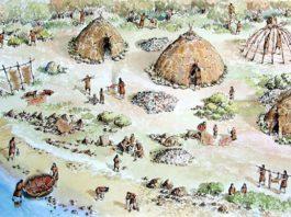 Мезолитическое население гомельского Полесья