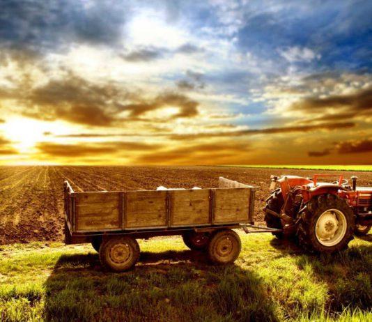 Прафесійныя святы і свята сельскагаспадарчага работніка
