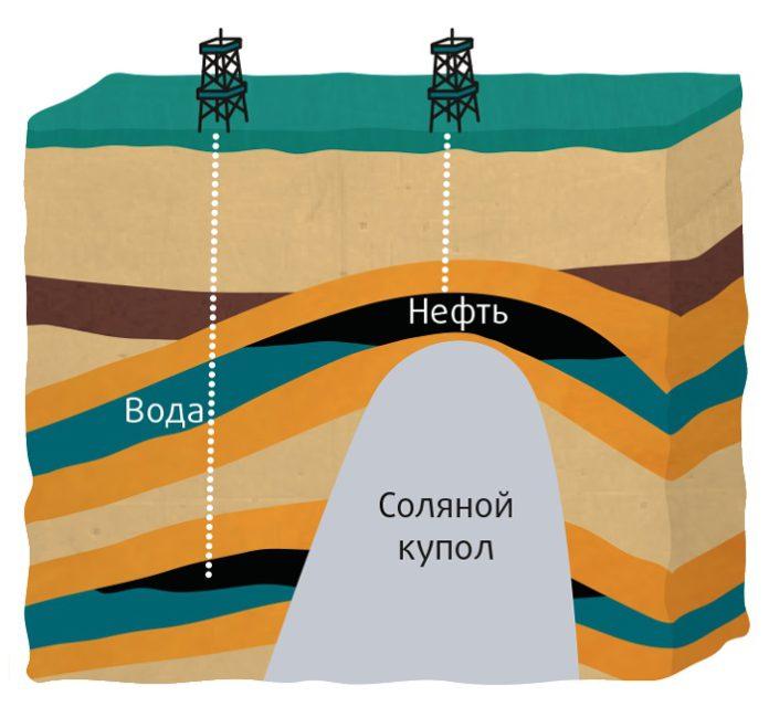Соляная тектоника Припятского прогиба и вклад З.А. Горелика в её изучение