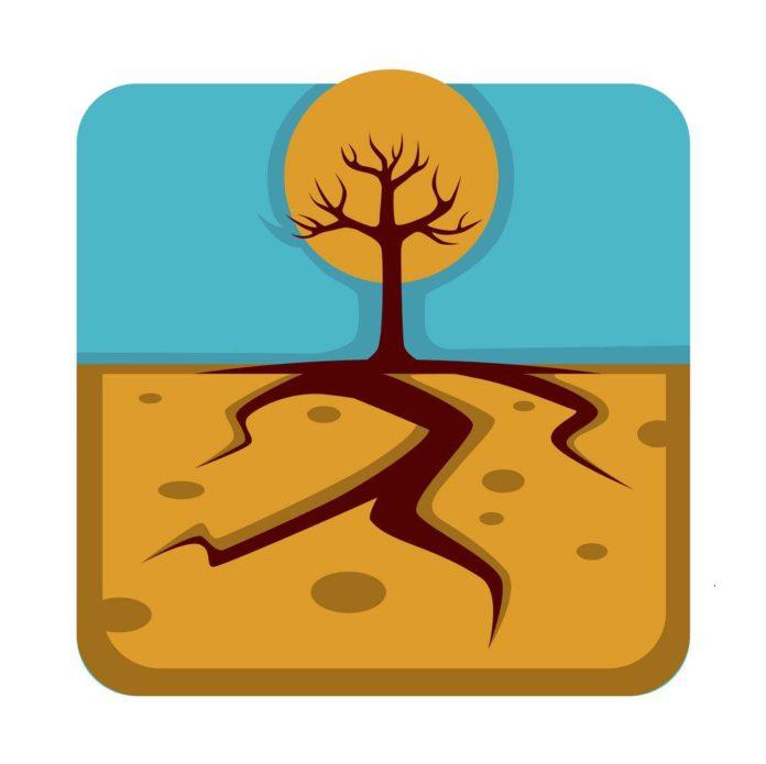 мелиорация и осушение почвы на Полесье в Беларуси
