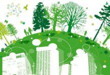 оценка эколого-геологического состояния урбанизированных территорий на примере Гомеля
