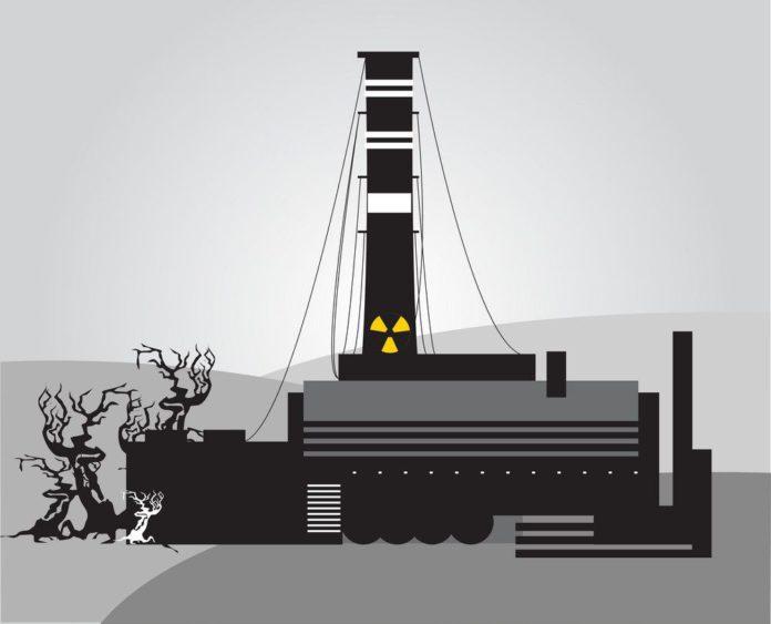 Авария на Чернобыльской АЭС и ей последствия для Гомеля