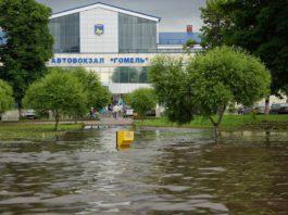 горелое болотое автовокзал в Гомеле