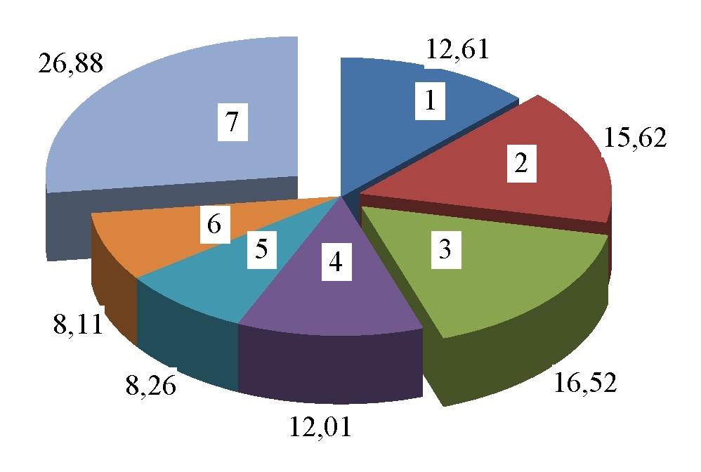Рис. 2. Доля ДТП по видам нарушений для г. Гомеля за 2013 г.