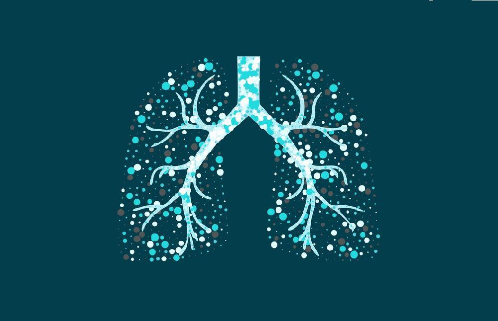 Туберкулёз в Гомельской области