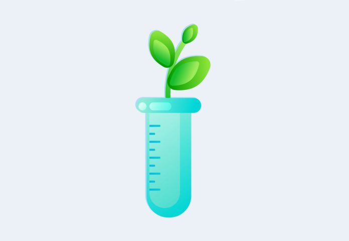 Генетически модифицированные организмы и отношение к ним населения г. Гомеля ГМО