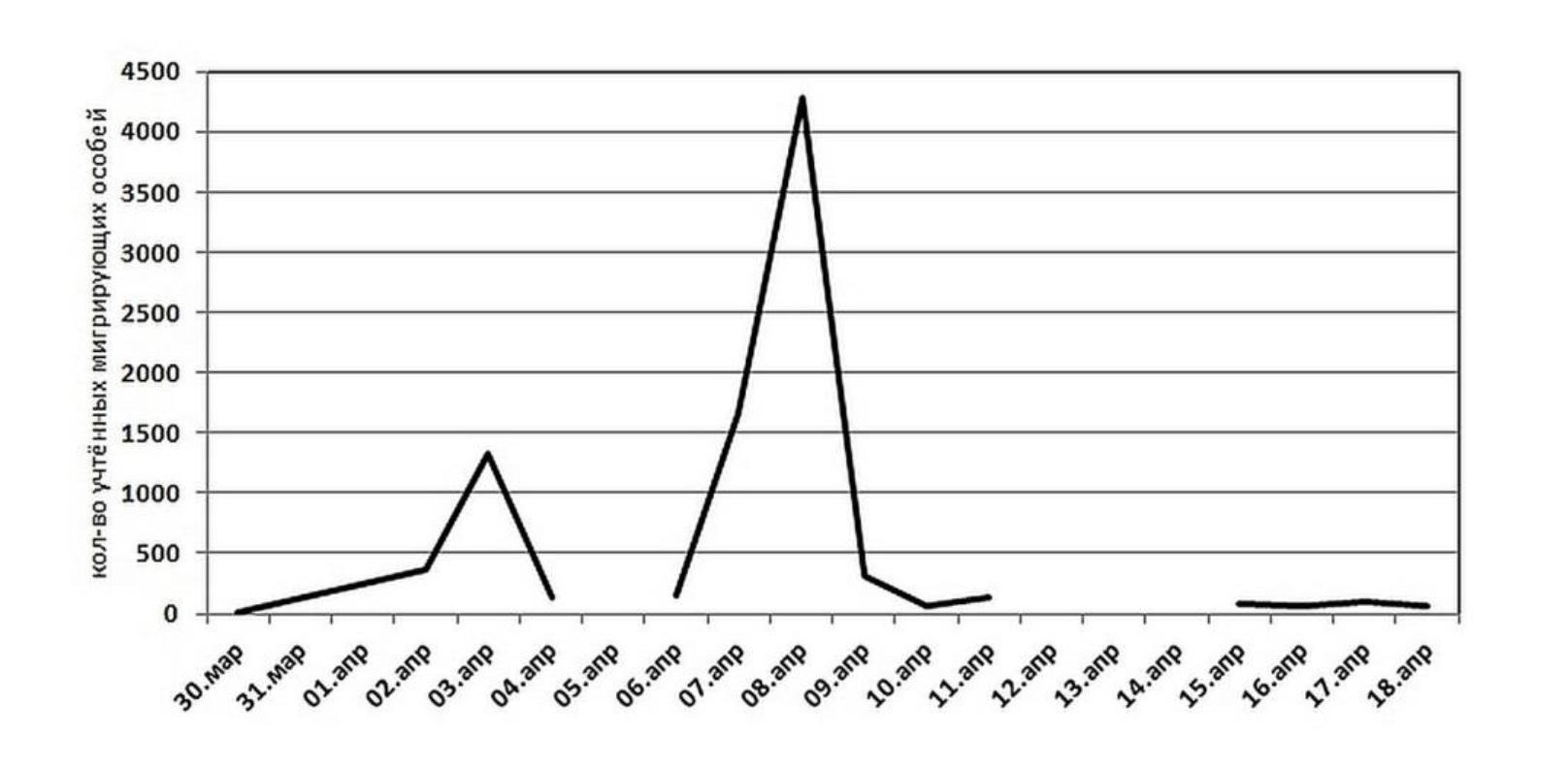 Рисунок 1 - Динамика миграции гусей (белолобого гуся Anser albifrons, гуменника Anser fabalis, серого гуся Anser anser) на примере весенней миграции 2006 г.