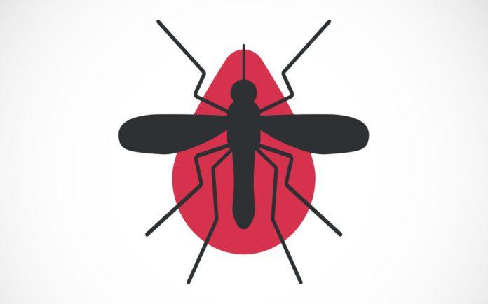 Некаторыя з народных сродкаў барацьбы з малярыя у Мазырскай акрузе