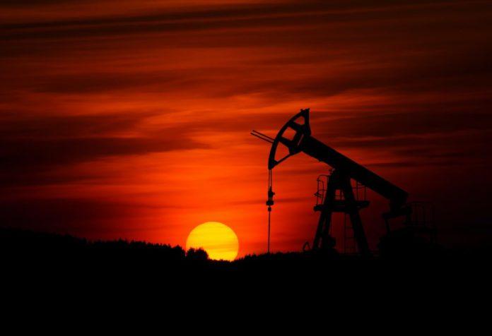 Воздействие геологоразведочных работ и нефтедобычи на почвенный покров Припятского нефтеносного бассейна