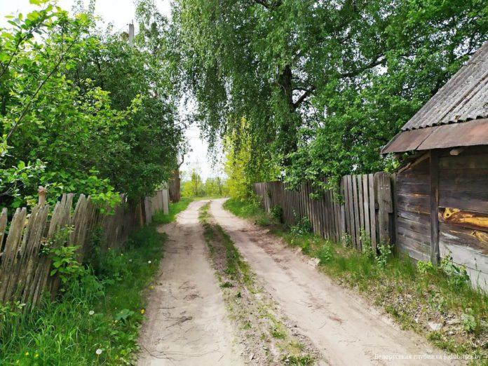 Вёска Галубіца ў гады Вялікай Айчыннай вайны